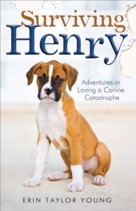 Surviving Henry_2D cover